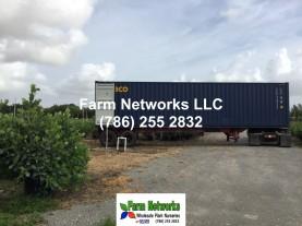 Florida-plant exporter