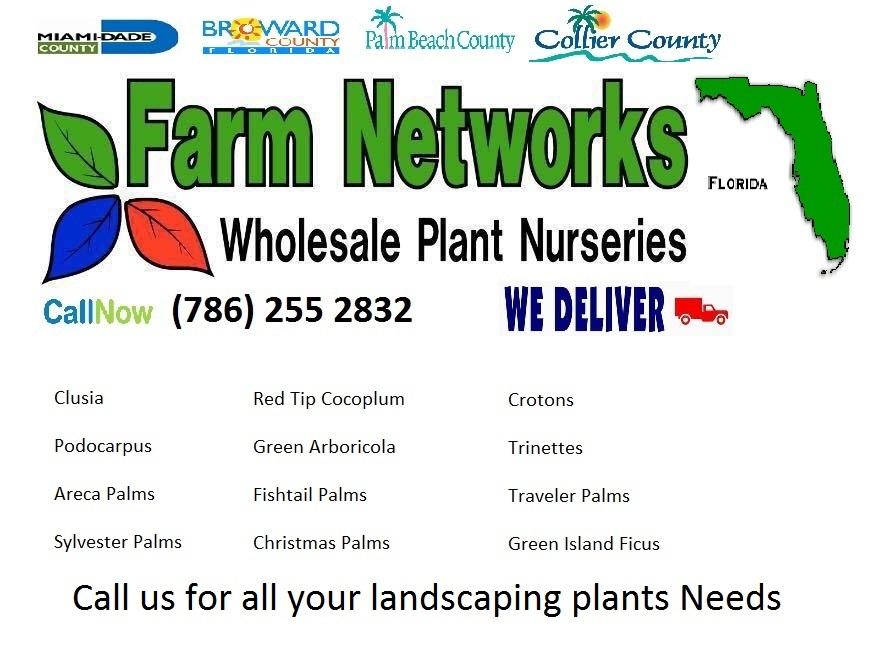 Florida Wholesale-Plant-Nursery